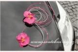 Detail anzeigen - Autoschmuck mit Orchideen