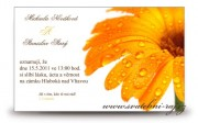 Detail anzeigen - Schöne Hochzeitsanzeige