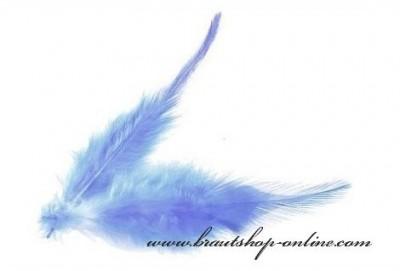 Federn blau
