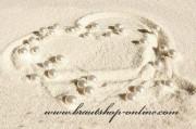 Detail anzeigen - Weisse Perlen auf Perlonfaden