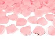Rosenblätter in rosa