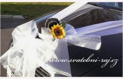 Zylinder mit Sonnenblume