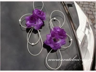 Auto Blumen