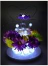 LED Licht - magische Blaubeeren