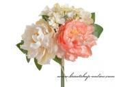 Detail anzeigen - Blume von Pfingstrosen