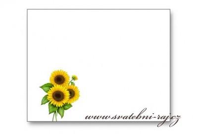 Namensschild Sonnenblume