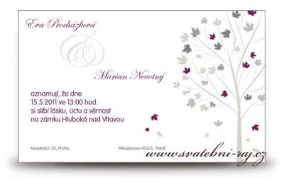 Hochzeitsanzeige