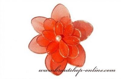 Blume zur Dekoration