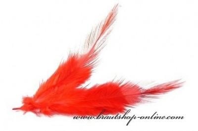 Federn rot