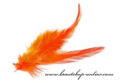 Federn orange