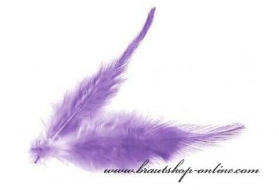 Federn lila
