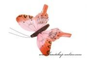 Detail anzeigen - Schmetterling in hellorange