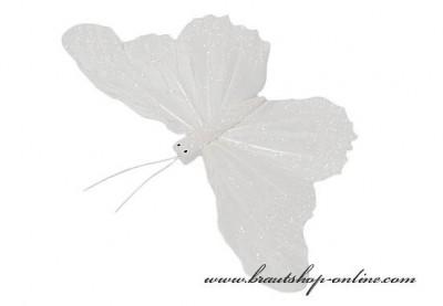 Schmetterling weiss gross