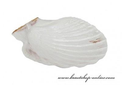Meeresmuscheln Hochzeit