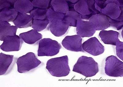Rosen Hochzeit violett