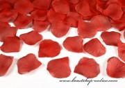 Detail anzeigen - Rosenblätter in rot