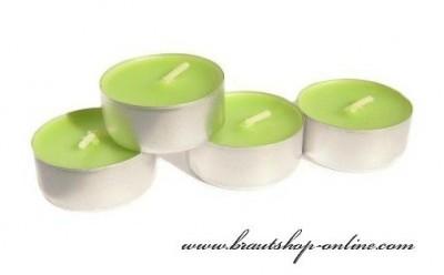 Teekerzen Aloe Vera