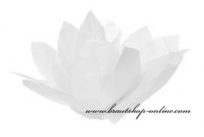 Wasserlaterne Lotus