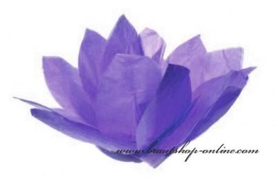 Wasserlaternen Lotus