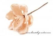 Detail anzeigen - Dekoration Blume in Lachsfarbe
