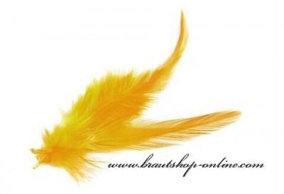 Federn gelb