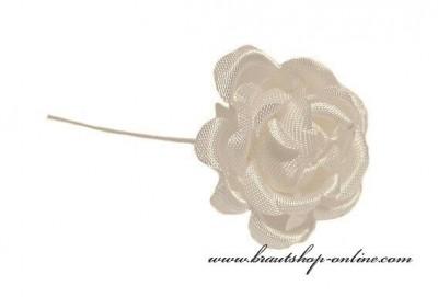 Rose Braut