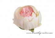 Detail anzeigen - Päonieköpfe rosa-creme - 6 Stück