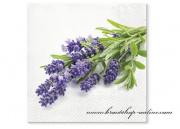 Detail anzeigen - Servietten mit Lavendel