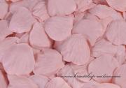 Detail anzeigen - Taftrosenblätter in bridal rose